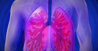 Lunger i menneksekrop