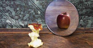 Et æbleskrog der ser sig i spejlet og ser et helt rundt æble