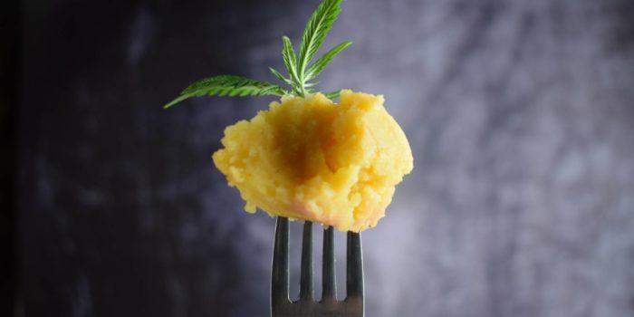 Kartoffelmos med et hampblad på en gaffel